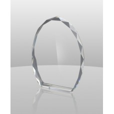 CR250 Crystal Medallion Award